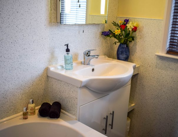Family bathroom with bath and shower over