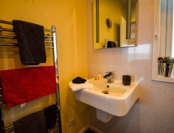 The shower room in our 2 bedroom Rowan Chalet at Port Beag Self-Catering Chalets, Wester Ross